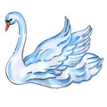 Swan with lift wings isolated on white background watercolor vector illustration Stock Photos