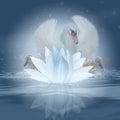 Labuť píseň fantazie labuť a květ