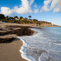 Swanpool falmouth cornwall sunny day on beach england uk Royalty Free Stock Photography