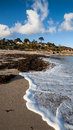 Swanpool falmouth cornwall sunny day on beach england uk Royalty Free Stock Image