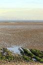 Swansea bay tidal flats a view across the of from the gower peninsula with lines of sharply dipping well bedded limestone in the Royalty Free Stock Image