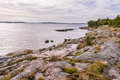 Swedish coast on the baltic sea view from and rocky Stock Photography