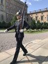 Swedish guardsman Royalty Free Stock Photo