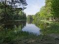 Swedish salmon area Royalty Free Stock Photo