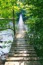 Swedish suspension bridge over morrum river Royalty Free Stock Image