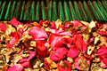 Sweepings outdoor petals leaves raking up rose and dead gathered on the ground and a broom head in the background Royalty Free Stock Photography