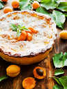 Sweet apricot pie Royalty Free Stock Photo