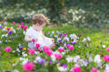 Sweet baby girl playing in a field of flowers Royalty Free Stock Photo