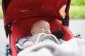 Sweet Baby In Stroller