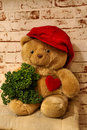 Sweet bear with a heart and a cap teddy Stock Image