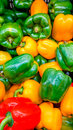 Sweet bell peppers image of colorful Stock Images