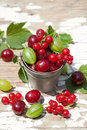 Sweet berries in the bucket red and green sunlight Stock Photos