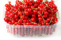 Sweet berries red currant Royalty Free Stock Photography