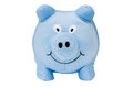 Sweet blue pig isolated on white background Royalty Free Stock Photo