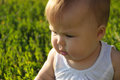 Sweet cheeks baby portrait at sunset grass backgrpund Royalty Free Stock Photography