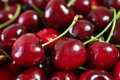 Sweet cherries heap of background Royalty Free Stock Image