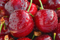 Sweet cherries with water drops closeup Royalty Free Stock Photo