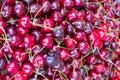 Sweet cherry background Royalty Free Stock Photo