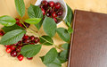 Sweet cherry and notebook for daily records berries of ripe lie in a white plate rasspypana on a wooden surface nearby a Royalty Free Stock Photos