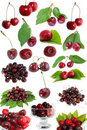 Sweet cherry set Royalty Free Stock Photo