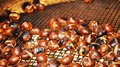 Sweet chestnuts on a silvered grill, background Royalty Free Stock Photo