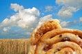 Sweet cinnamon raisin buns Stock Images
