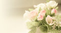 Sweet color roses in soft and blur style on mulberry paper texture Royalty Free Stock Photo