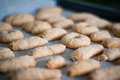 Sweet cookies on a baking sheet Royalty Free Stock Photography
