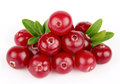 Sweet cranberries with leafs Stock Images