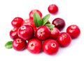 Sweet cranberries Royalty Free Stock Photo