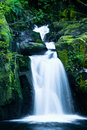 Sweet creek falls oregon this cascading waterfall is located in central away from the coast Stock Image