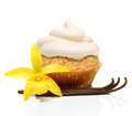 Sweet dessert, cupcake  with vanilla pods Royalty Free Stock Photo