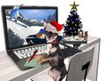 Sweet Dog Chihuahua Ordered Christmas Cards