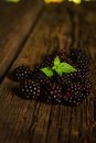 Sweet fresh blackberry in the wood bawl Royalty Free Stock Images