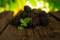 Sweet fresh blackberry in the wood bawl Stock Photography