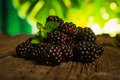 Sweet fresh blackberry in the wood bawl Royalty Free Stock Photo