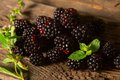 Sweet fresh blackberry in the wood bawl Royalty Free Stock Photography