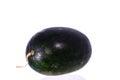 Sweet Green Watermelon