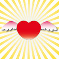 Sweet heart with wings Stock Images