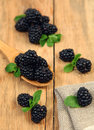 Sweet ingredient blackberry on wooden table Stock Photos