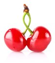 Sweet juicy cherry Royalty Free Stock Photos