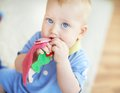 Sweet laddie portrait of cute infant playing with toy Stock Photo