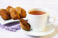 Sweet madeleine and cup of tea Stock Photography