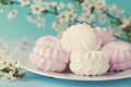Sweet marshmallow or zephyr in white plate on turquoise background, diet dessert Royalty Free Stock Photo