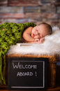Sweet newborn baby sleeping on softy blanket