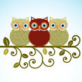 Sweet Owls on a perch Stock Photography