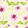 Sweet peas pale pink flowers with green leaves over polka dots background.