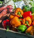 Sweet pepper at a stall on a market Stock Images