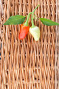 Sweet peppers on background basket Stock Images