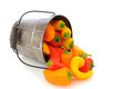 Sweet Peppers Spilling from Bucket Royalty Free Stock Photo